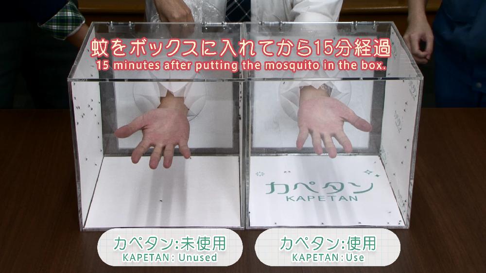 「カペタン」室内用粘着シートの防蚊試験動画